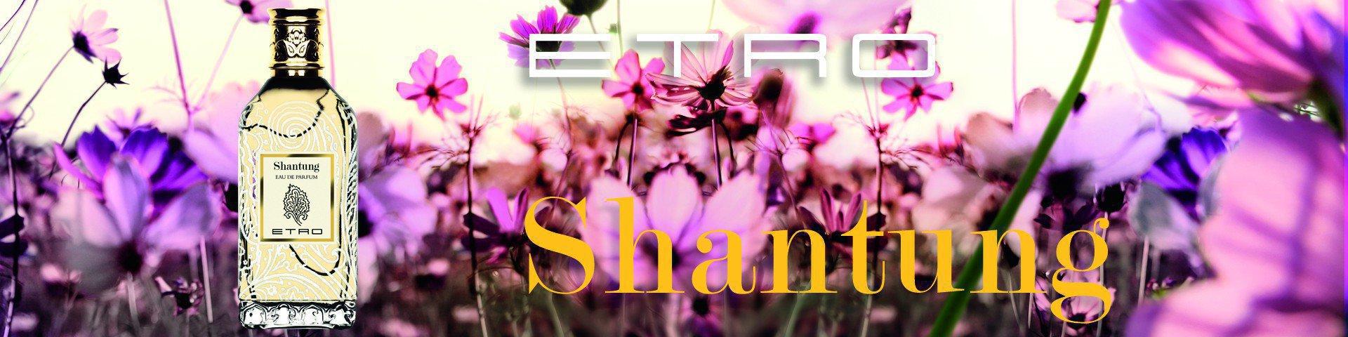 Etro Shanting