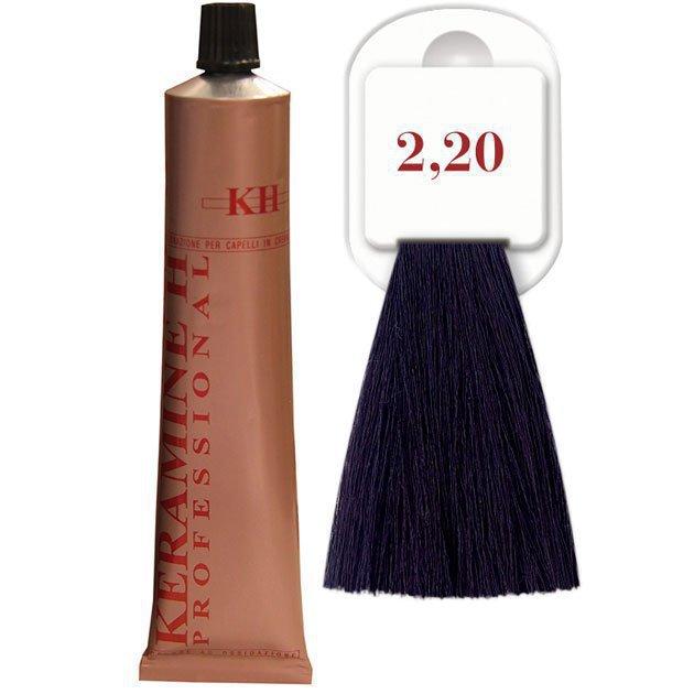 Salon Haircolor Cream тон 2.20 черно-фиолетовый
