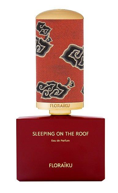 Sleeping On The Roof