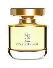 Rose Etoile de Hollande