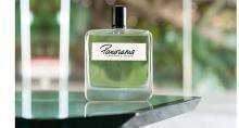 Panorama – живописный аромат от Olfactive Studio